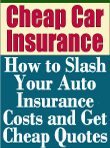Discount vehicle insurance